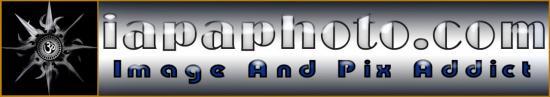 Mon logo & nom de domaine
