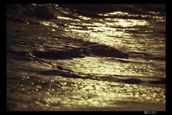 Les vagues en or